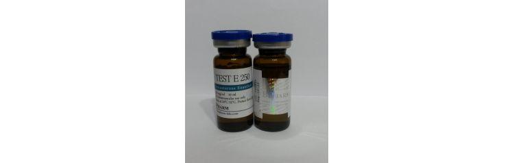 BPharm Test-E 250 мг/мл 10 мл