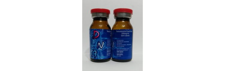 DNA Testosteron Enanthate 250 мг/мл 10 мл